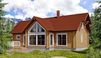 Srubový dům Levi C